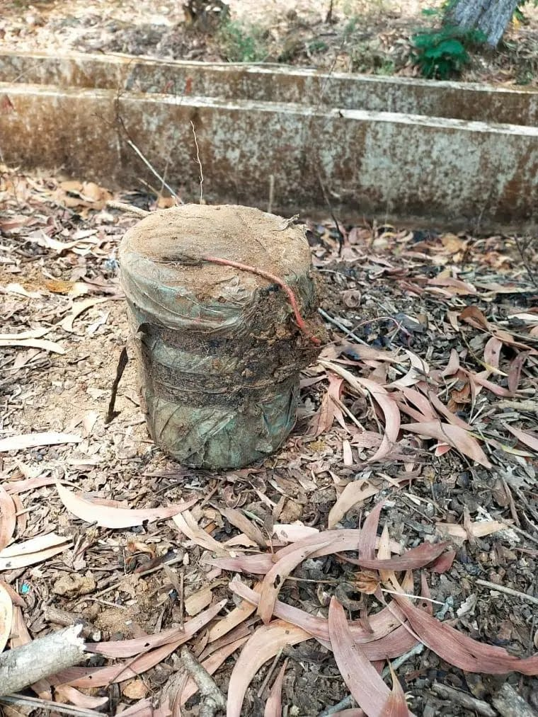 Chhattigarh: ITBP detects bomb in Narayanpur; CPI Maoists to observe Bharat Bandh on April 26